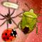 Bug Rampage