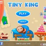 Tiny King Screenshot