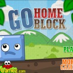 Go Home Block Screenshot