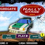 Rally Stage Screenshot