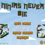 Ninjas Never Die Screenshot