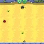 Beetle Roll Screenshot